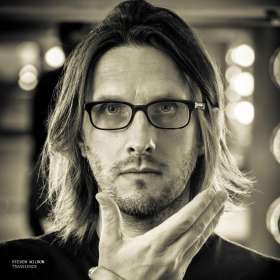Steven Wilson: Transience, 2 LPs