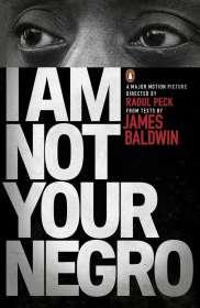 James Baldwin: I am Not Your Negro, Buch
