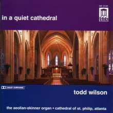 Todd Wilson - In a quiet Cathedral, 2 CDs