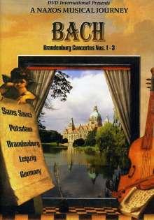 Johann Sebastian Bach (1685-1750): Brandenburgische Konzerte Nr.1-3, DVD