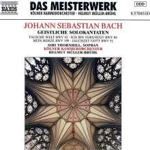 Johann Sebastian Bach (1685-1750): Kantaten BWV 51,52,84,199, CD