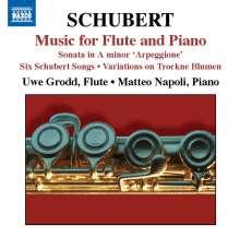 Franz Schubert (1797-1828): Werke für Flöte & Klavier, CD