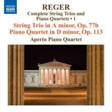 Max Reger (1873-1916): Sämtliche Streichtrios & Klavierquartette Vol.1, CD