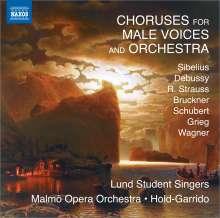 Chorwerke für Männerchor & Orchester, CD