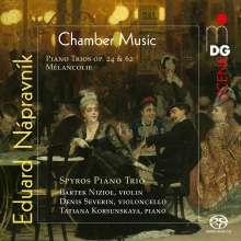 Eduard Napravnik (1839-1916): Klaviertrios op. 24 & 62, SACD