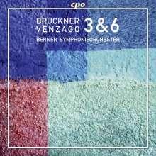 Anton Bruckner (1824-1896): Symphonien Nr.3 & 6, 2 CDs
