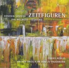 Dominik Susteck (geb. 1977): Zeitfiguren für Orgel solo, SACD