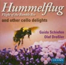 Guido Schiefen - Hummelflug, CD