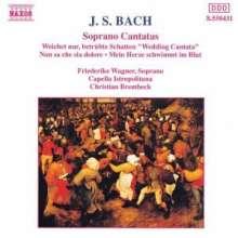 Johann Sebastian Bach (1685-1750): Kantaten BWV 199,202,209, CD