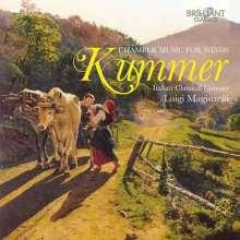 Caspar Kummer (1795-1870): Kammermusik für Bläser, CD