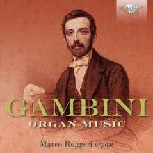 Carlo Andrea Gambini (1819-1865): Orgelwerke, 2 CDs