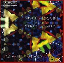 Quartetto David - Music für String Quartet, CD