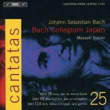 Johann Sebastian Bach (1685-1750): Kantaten Vol.25 (BIS-Edition), CD