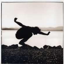 Eddie Vedder: Filmmusik: Into The Wild (O.S.T.) (180g), LP