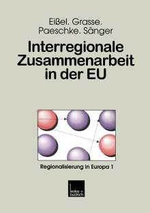Dieter Eißel: Interregionale Zusammenarbeit in der EU, Buch